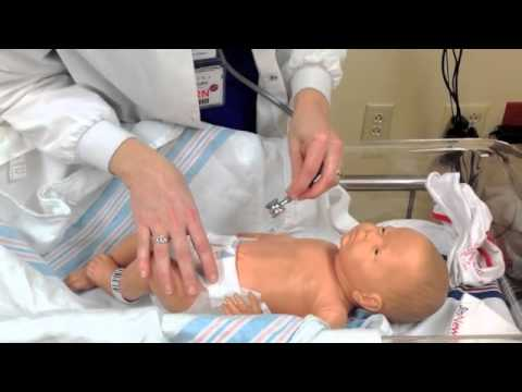 Nursing 202: Newborn Assessment