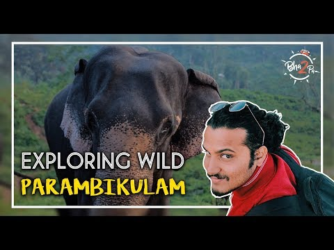 Parambikulam Tiger Reserve | Marathi Man Vs. Wild #Bha2pa