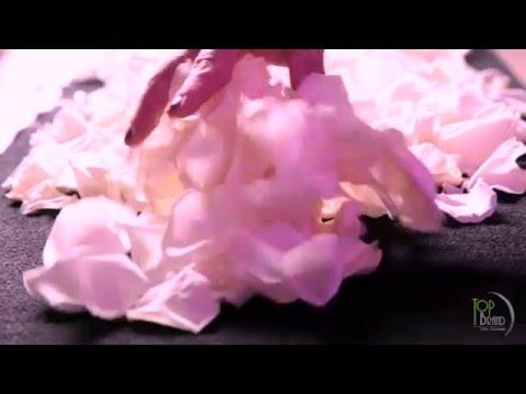 Rueda de Prensa Nina Ricci   L'extase  -  Agencia Top Brand