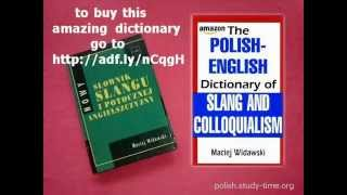 The Polish-English dictionary of slang