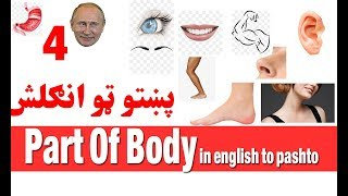 part of body in English to Pashto speaking courses  Free Learning Part 4/30  Pashto To English