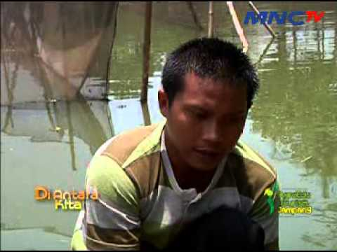 Agroedu Tourism Jampang #segmen2 Travel Video