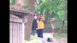 Fatback: Enjoi in Taiwan