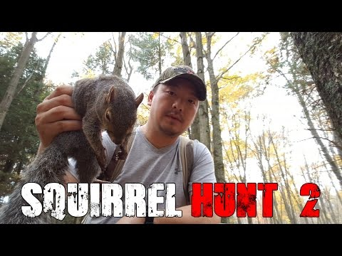 Squirrel Hunt 2 - Vlog #7