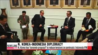 "N. Korea comes up with ""concrete proposal"" to reduce tensions on peninsula: Indonesia FM"