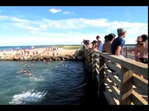 Jumping off the 'Jaws' bridge on Martha's Vineyard