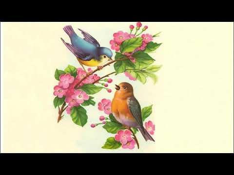 Hum Yaar Hain Tumhare (Full Song) | Alka Yagnik, Udit Narayan| ~ HD Audio [320kbps] ~ 720p