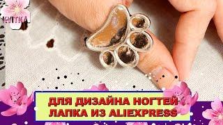 ДИЗАЙН НОГТЕЙ: Лапка-палитра на пальчик: Соколова Светлана