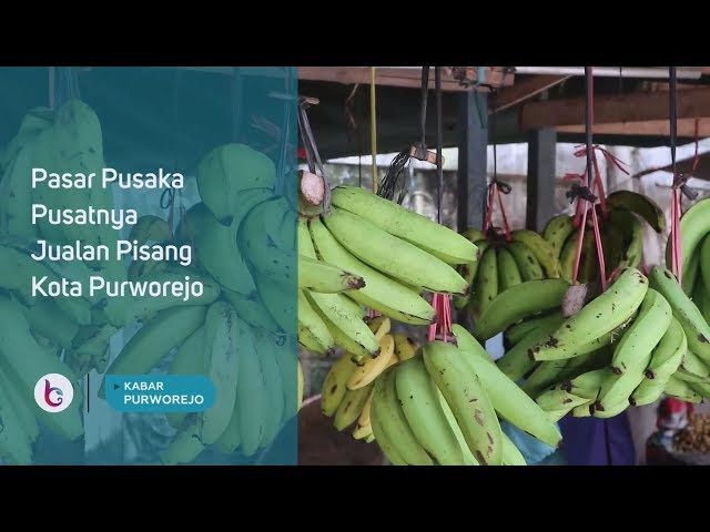 Pasar Pusaka Pusatnya Jualan Pisang Kota Purworejo