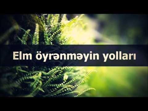 Veysəl: Elm öyrənməyin yolları
