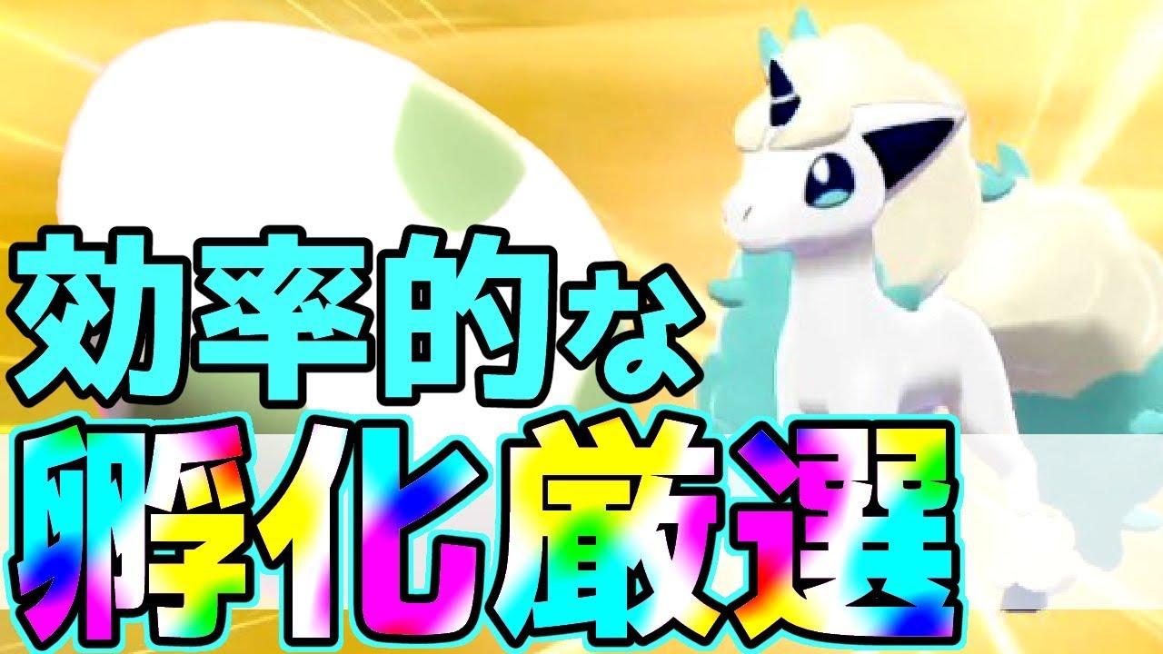 【色違いGET】3時間以内に色違いポケモンを出す方法はこれだ!!【 ポケモン剣盾 】