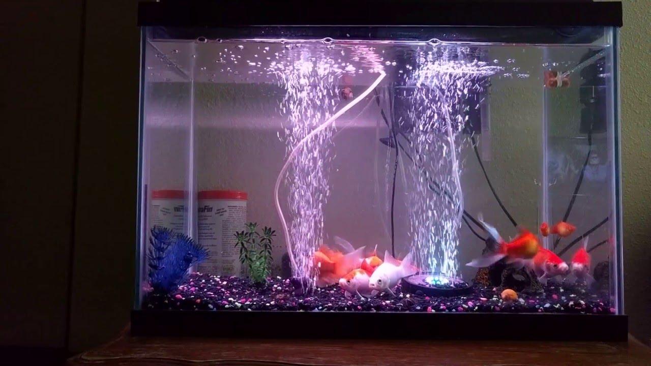 Aquarium fish tank air curtain bubble generator ekostore for Airstone for fish tank