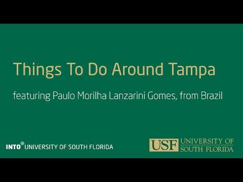 INTO USF Things To Do in Tampa Portuguese with English subtitles
