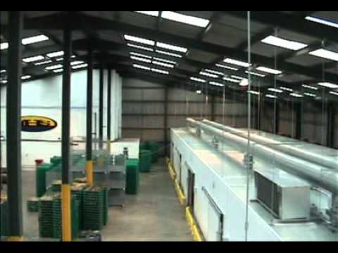 JHS Grimsby Fish Drying Factory By Samey