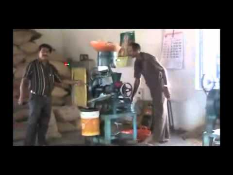 Importance of bio fuel Kannada BAIF Karnataka