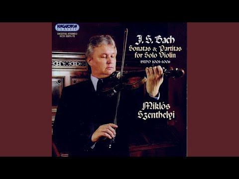 Partita No. 2 In B Minor BWV 1002 - I. Allemanda