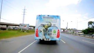 CNG PTSC Buses