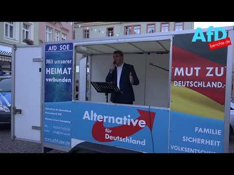 Andre Poggenburg AfD Sachsen/Anhalt auf der Demo in Pirna 7.Juni.18