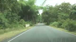 Satyamangalam Tiger Reserve - Road view video - Dhimbham to Chamarajanagar Route