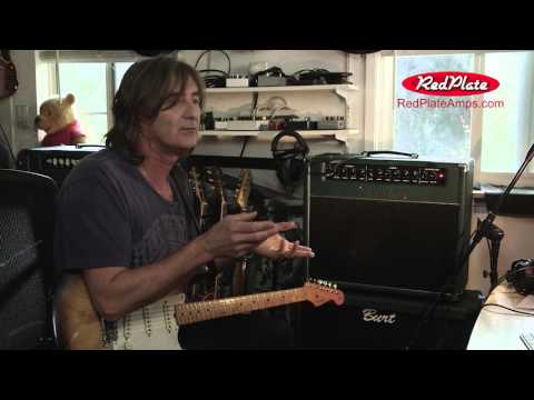 RedPlate Blackline Guitar Amplifier & Cabinet Glorious Dumble / Blackface  Tones