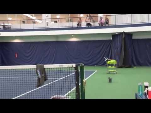 VBTCC: A Premier Tennis Facility