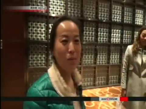 Chinese immigration to the United States NHK 3/29/17
