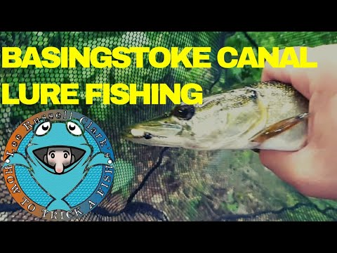 Basingstoke Canal Lure Fishing