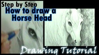 How to draw a Horse head 2