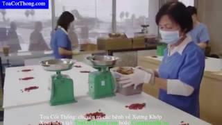 Tọa Cốt Thống - Chuyên trị bệnh xương khớp