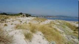 Filmato spiagge nioleo