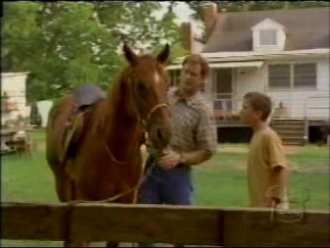 Watch Horse Sense (1999) 123Movies Watch Online Free ...