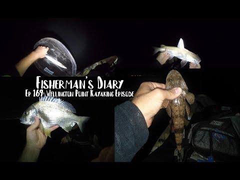 Ep 169: Mixed Bag Kayak Fishing At Wellington Point ~ Fisherman' Diary