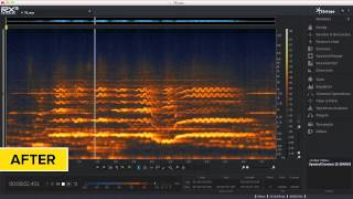 Remove Noise from Audio with iZotope RX® 3