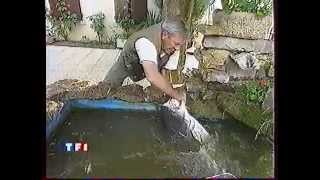 TF1 JEAN PIERRE PERNAUT 1995. silure avec jc TANZILLI