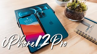 iPhone12Proが届いた! 初日HDRビデオ撮影!