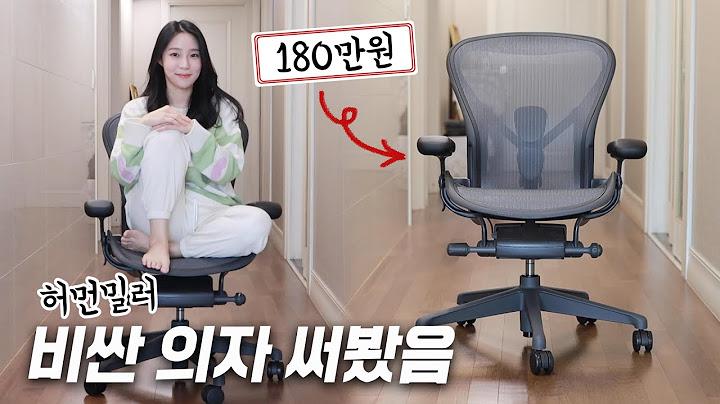 구글/애플/카카오/네이버에서 쓴다는 '그 의자' 비싼 만큼 좋을까? [호기심리뷰]