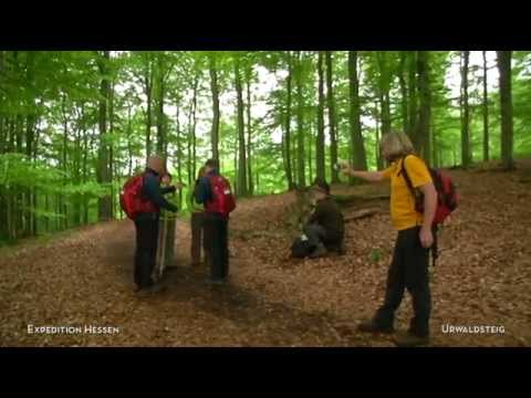 Expedition Hessen 2014: Nationalpark Kellerwald Edersee - Urwaldsteig