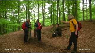 Expedition Hessen 2014: Nationalpark Kellerwald Edersee - Urwaldsteig (Etappe 5)