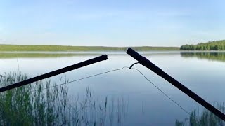 Жесть Сломал Фидер! Ловля на поплавок. Поклёвки крупным планом. Летняя рыбалка 2020