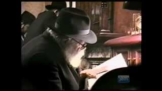 The Lubavitcher Rebbe On Tisha B'av Nidcheh