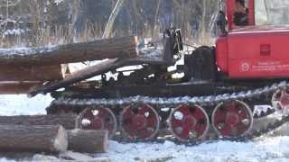 Легендарный ТДТ 55 заготовка леса