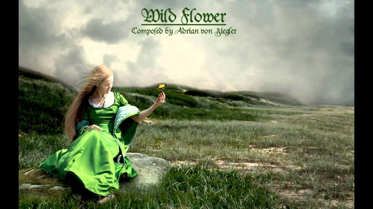 Hd Irish Wallpaper Celtic Music Wild Flower Youtube
