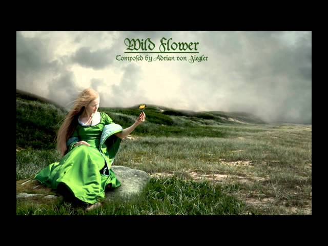 Celtic Music - Wild Flower