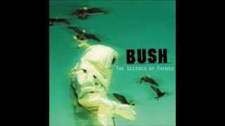 Bush -The Chemicals Between Us - Stafaband