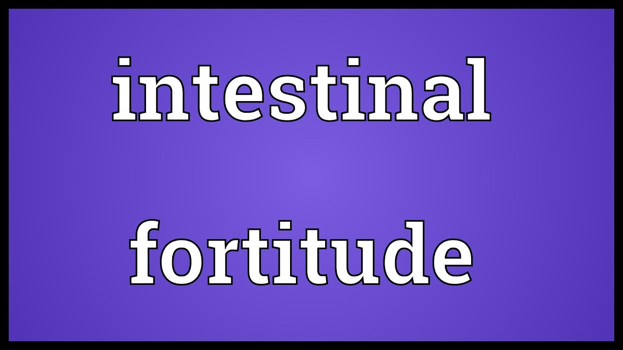 Good Intestinal Fortitude Meaning   YouTube