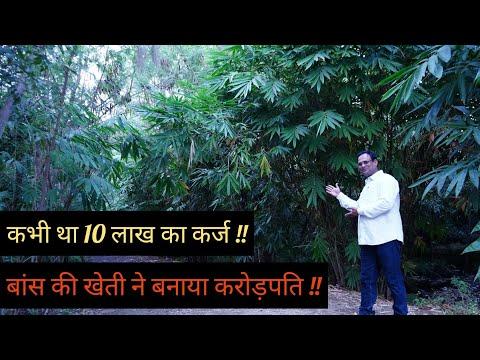 Bamboo Farming ने बनाया करोड़पति || कभी था 10 लाख का कर्ज || Successful Farmer || Hello Kisaan