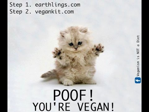 "First Video - Passing out ""Poof! You're Vegan"" fliers"