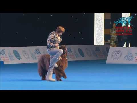 FCI Dog dance World Championship 2016 – Freestyle final  - Marina Novoselova and FUNNYUF (Russia)