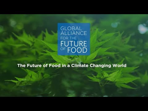 The Future of Food in a Climate Changing World
