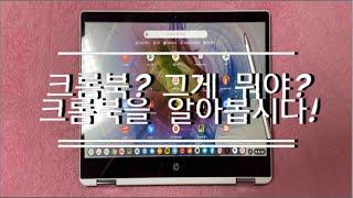 20만원대 저렴한 노트북! 크롬북?!